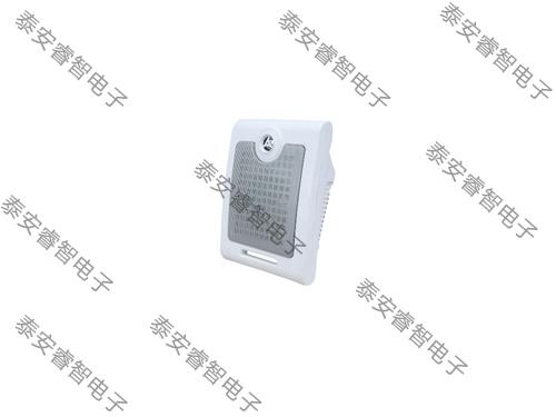 名普M-602豪华壁挂音响