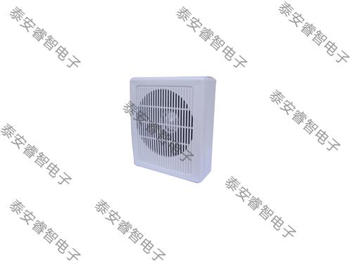 名普M-603小壁挂音箱