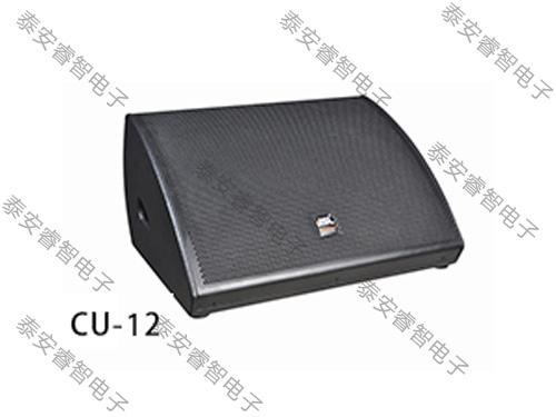 舞台演出音响-返听音箱/监听音响CU-12
